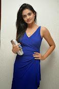Nikitha Narayan glam pics in blue-thumbnail-4