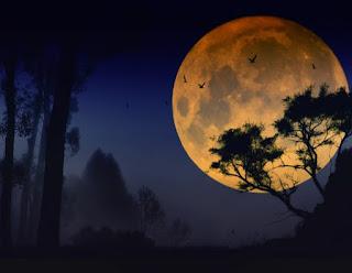 Puisi selamat malam