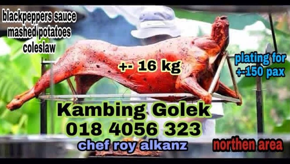 KAMBING GOLEK ROY ALKANZ
