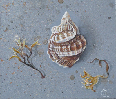 Seashore treasures, gouache on paper, Shevaun Doherty
