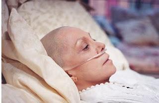 Gingseng RH2 Obat herbal kanker yang sudah uji klinis