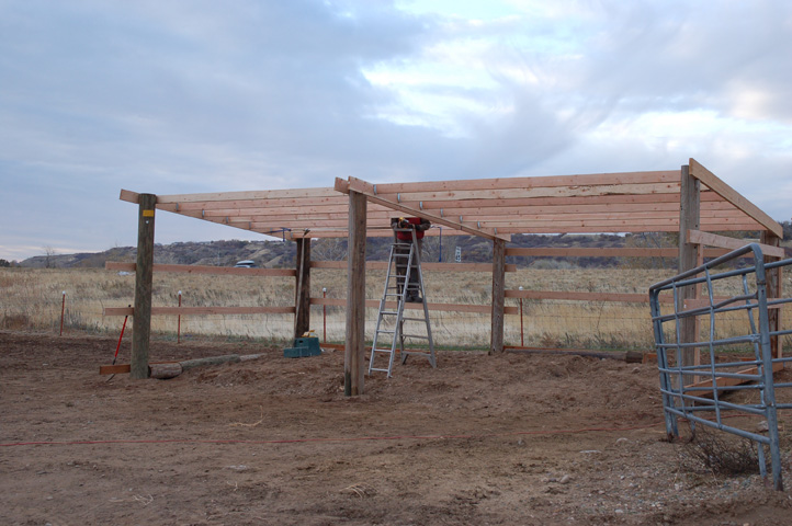 High desert farm girl diy three sided shed for our alpacas for Farm shed ideas