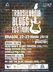 Transilvania Blues Festival !