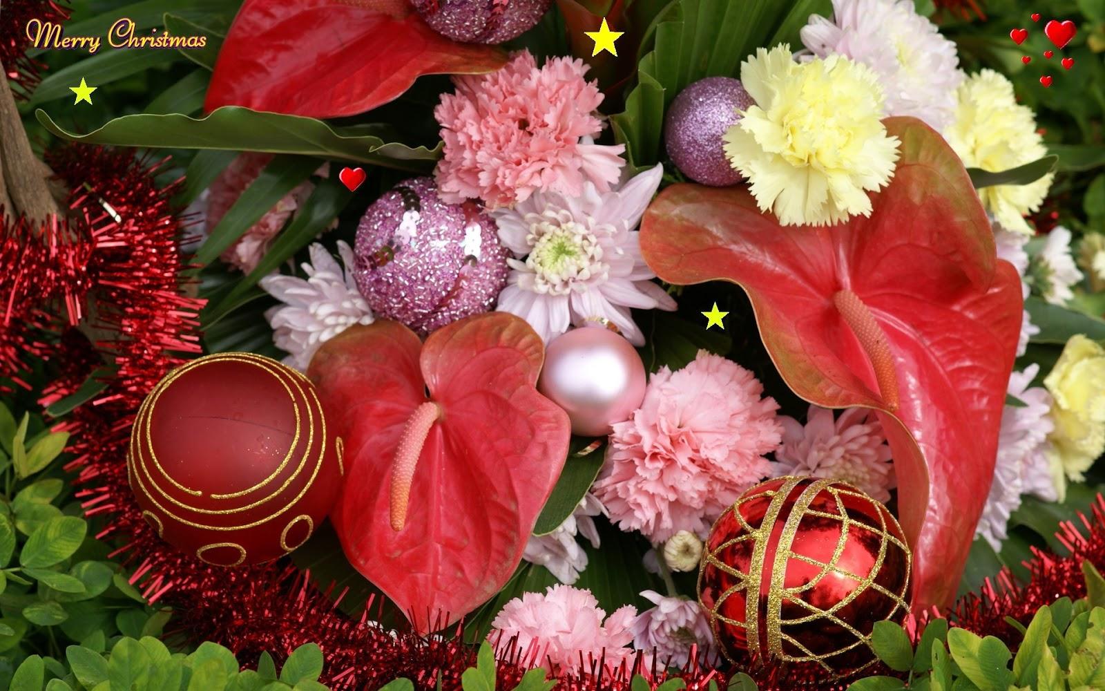 http://2.bp.blogspot.com/-osTFndCP5rM/UMLWiQsATEI/AAAAAAAAGYU/9z8dereSmPg/s1600/hd+wide+screen+christmas+wallpaper.jpg