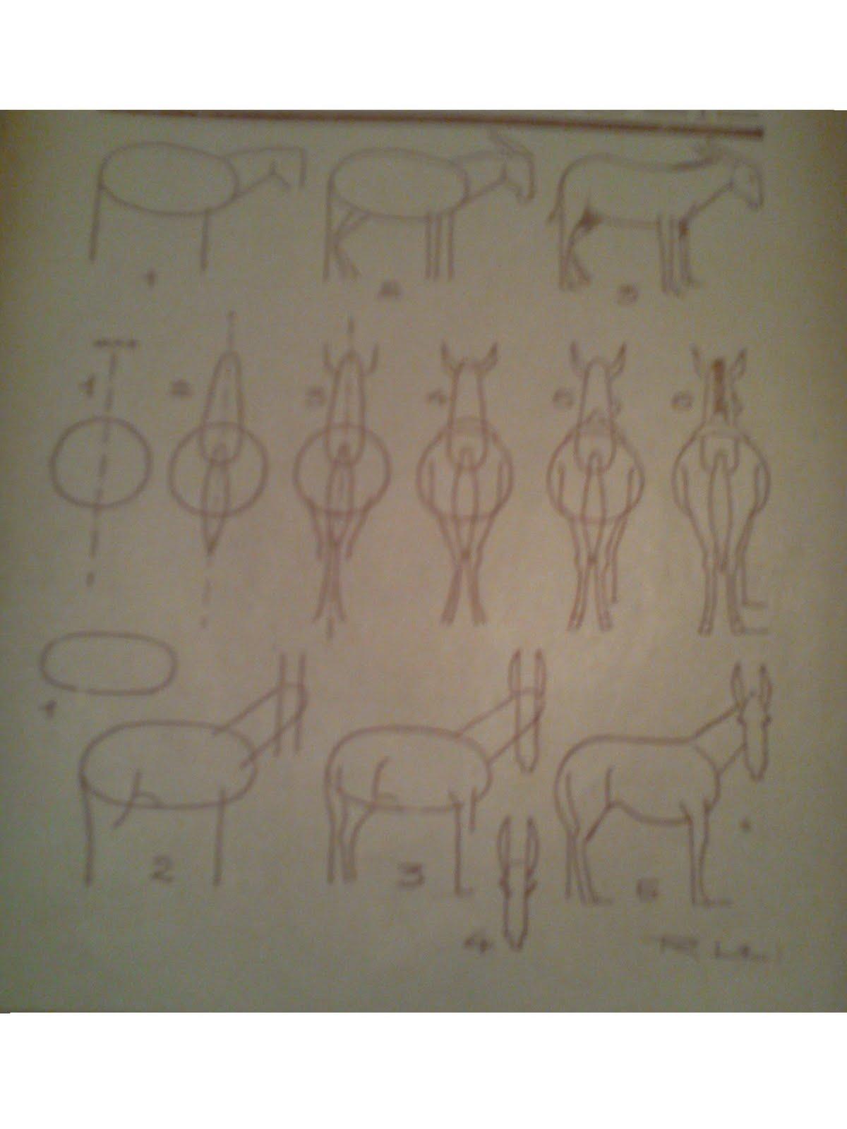 Dessins astuces pour debutants dessiner ane et mulet - Dessiner un ane ...