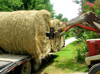 loading round bales on a trailer