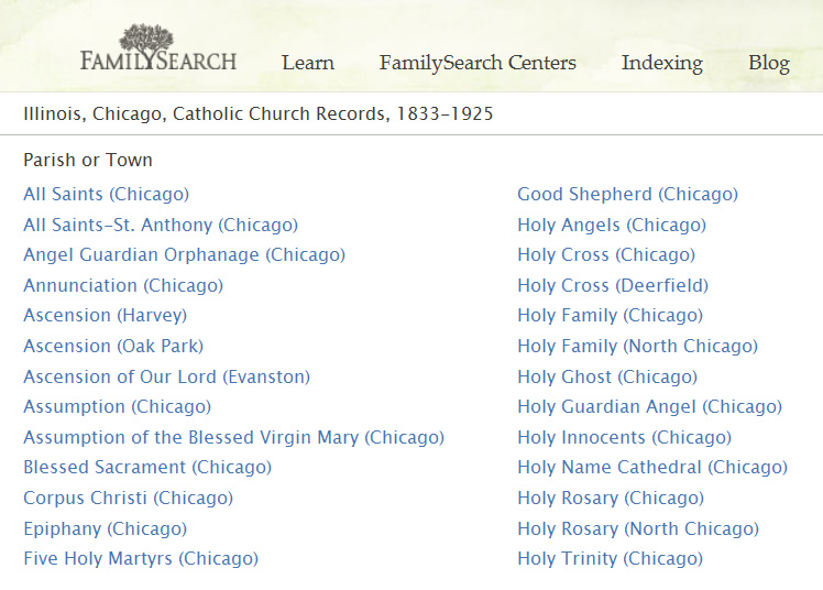 Chicagogenealogy Research Insights From Study And Serendipity 2011