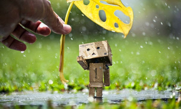 the story of danbo part 1 gallery wallpaper hd