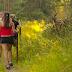 Walking In Nature Prescription For Better Health