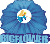 Bigflower Entertainment Company