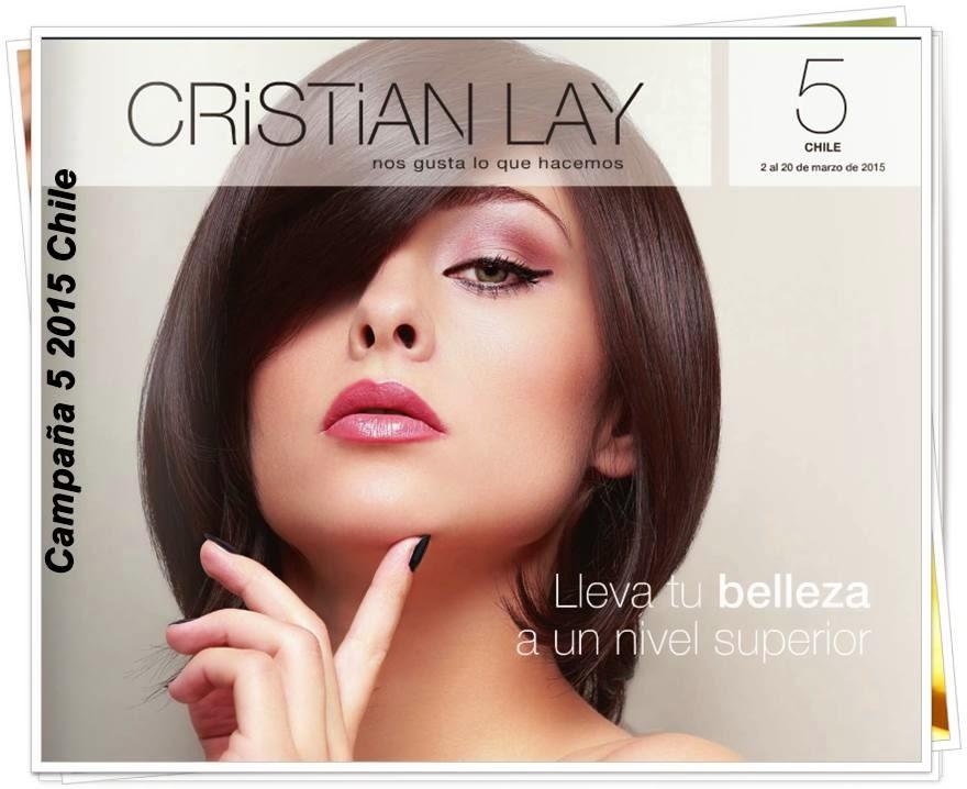 Cristian Lay Campaña 5 2015 Chile