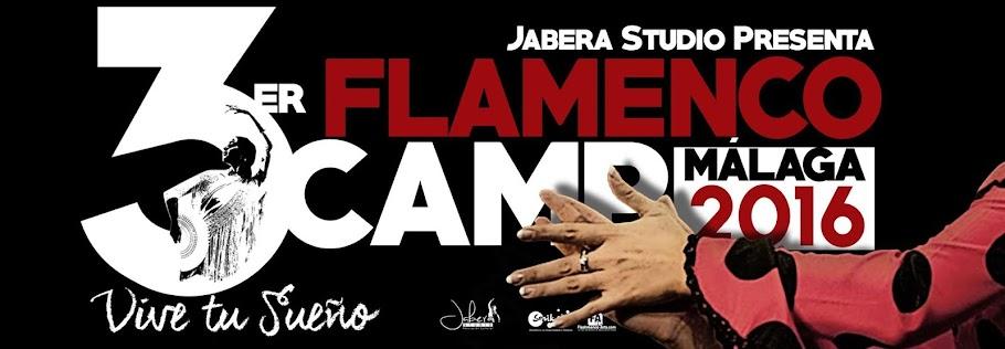 Campamento Flamenco Internacional