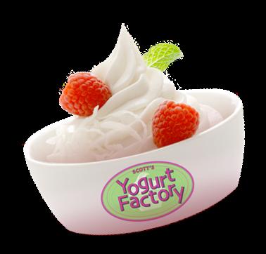 Yoghurt - Lactobacillus bulgaricus , Streptococcus thermophillus