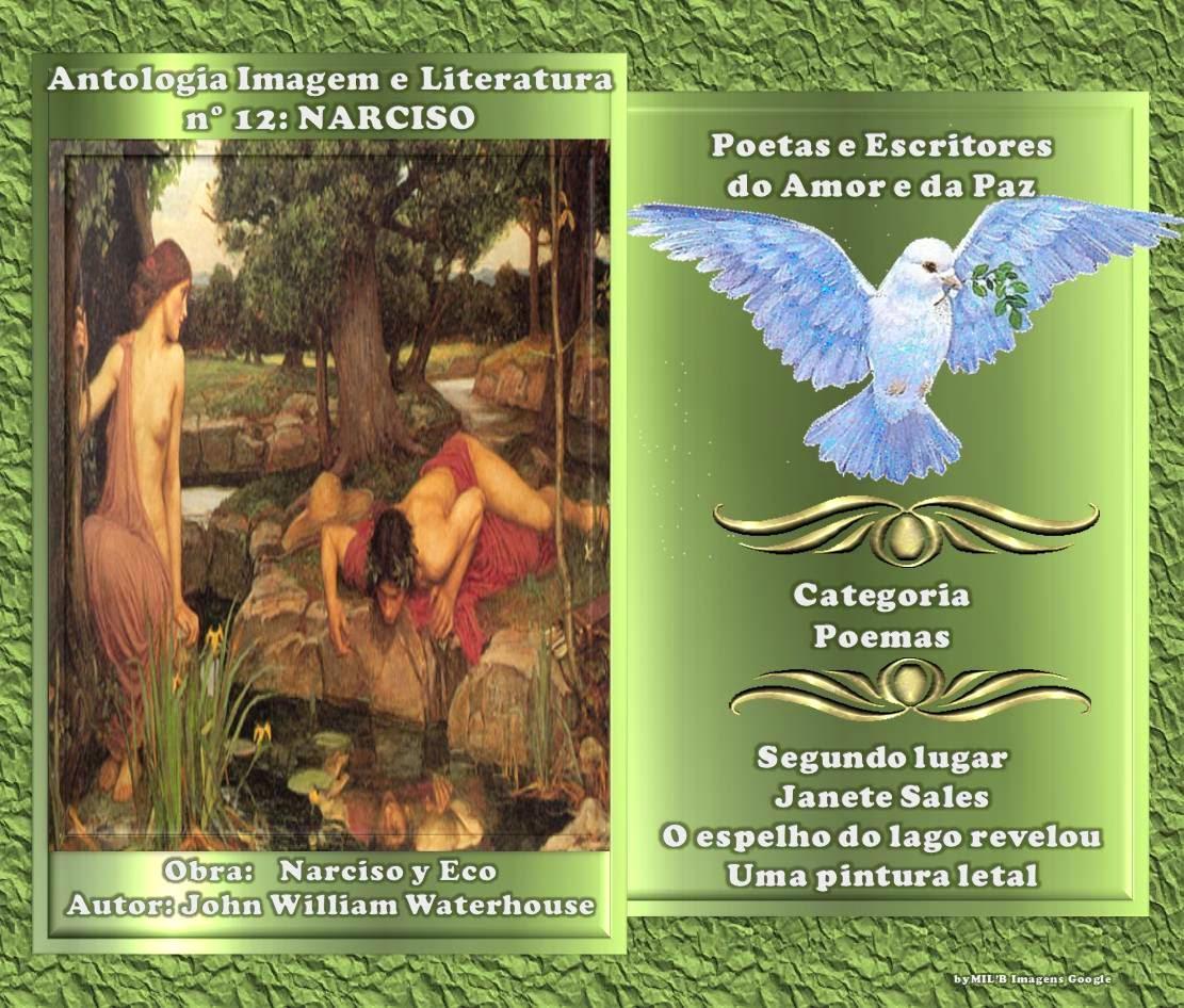 Prêmio que recebi ao participar na Peapaz do grupo  Antologia Imagem  Literatura nº11