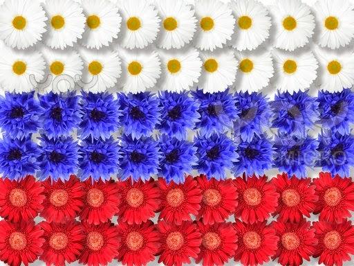 Флаг россии из живых цветов