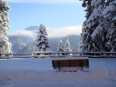 ILGAZ DAĞI VE KASTAMONU TATİLİ - ILGAZ MOUNTAIN AND KASTAMONU CITY HOLIDAY