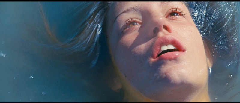 blue is the warmest color with subtitles