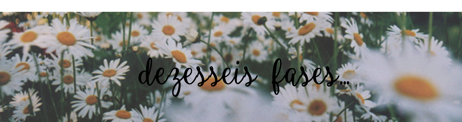 Dezesseis Fases