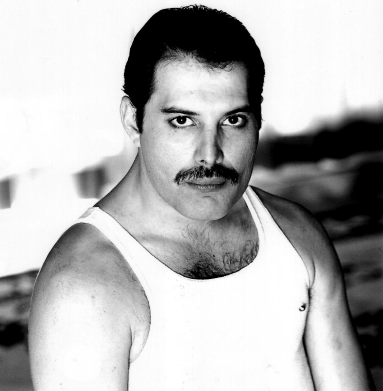 Freddie Mercury Hairstyle Men Hairstyles Review Hairstyles