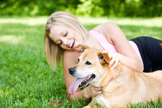 Dog-Training-Dog-Obedience