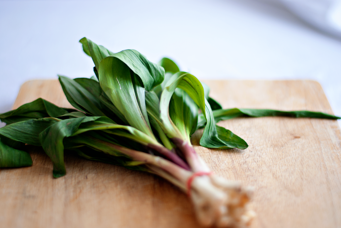 close up of wild ramps (leeks)