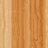 Woody iPad-iPad 2 Wallpapers 1