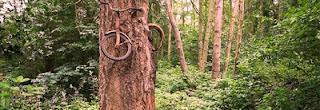 aneh, Foto Sepeda Dicuri Pohon