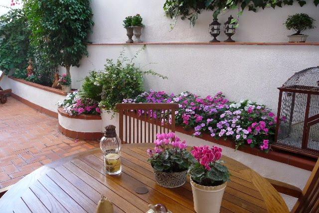 Una terraza convertida en jard n guia de jardin - Plantas para arriates ...