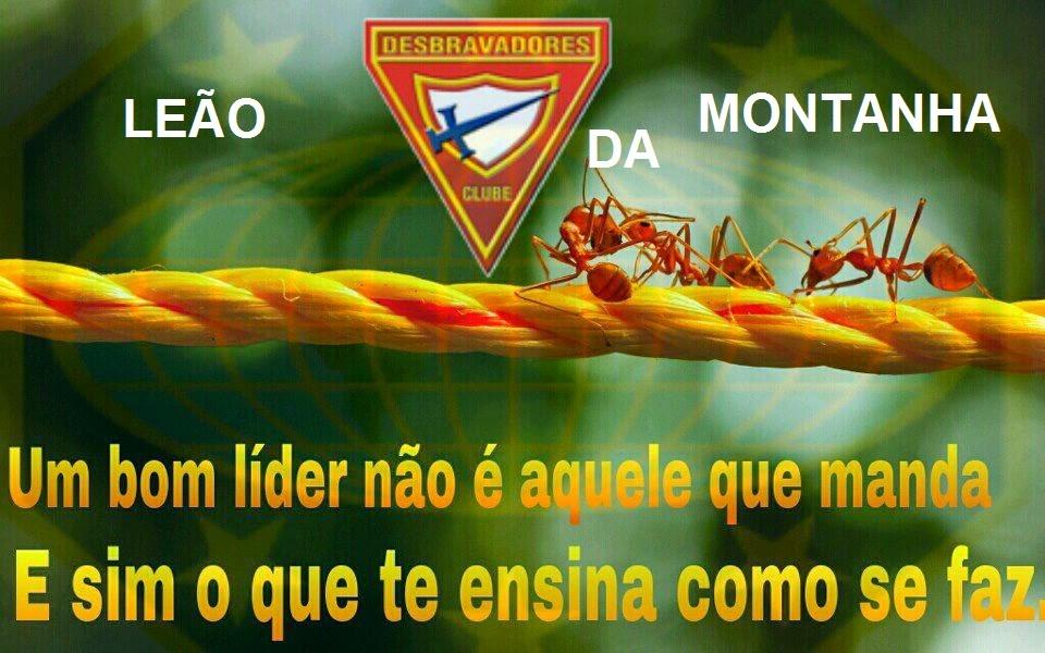 CLUBE LEÃO DA MONTANHA
