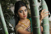 Shriya Saran latest Photos in saree-thumbnail-14