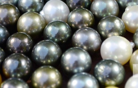 vincent peach tahitian pearls