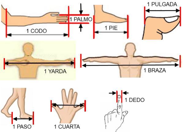 Lenguaje matematico y tics la medici n en educaci n for Cuales son medidas antropometricas
