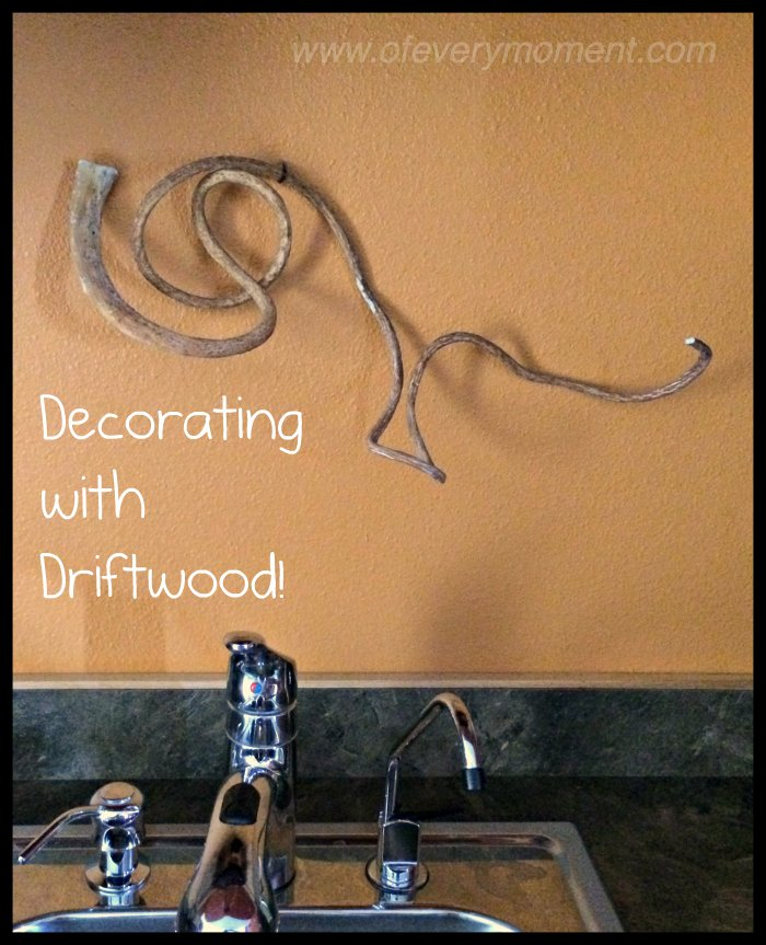 driftwood, decor, seaweed