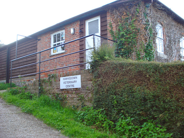Hawkesdown Veterinary Centre