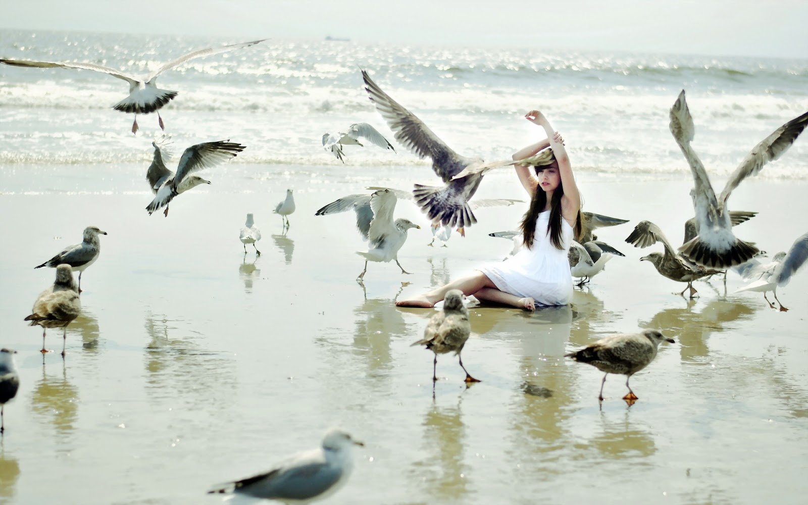 Girl and Seagulls on Beach