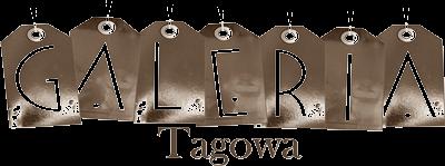 http://tagi2013.blogspot.com/