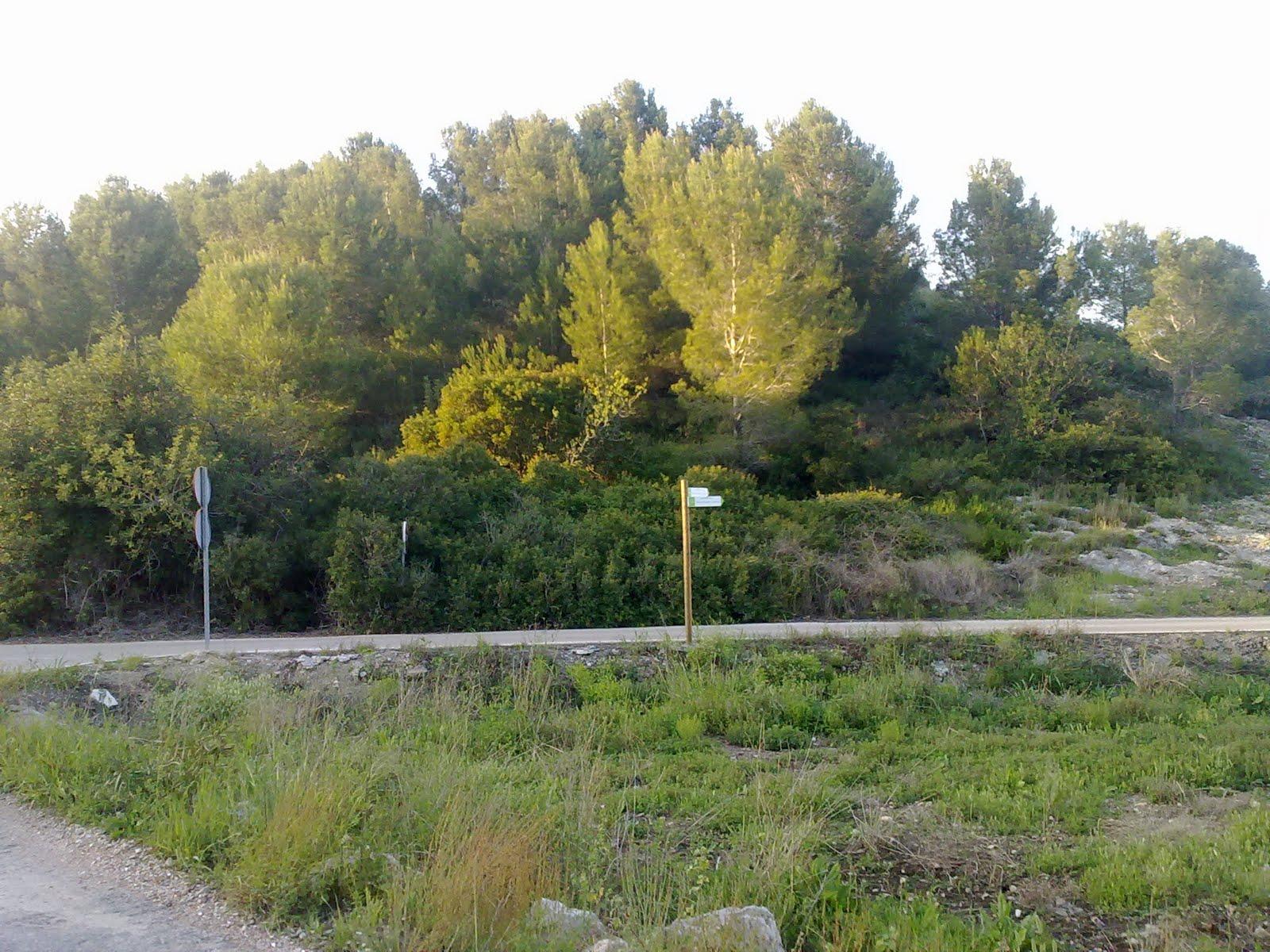 Camí del Bovar i senda de la Muntanyeta de la Creueta, marjal de Xeresa