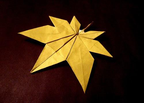 origami maniacs origami maple leaf by kyuseok jassu