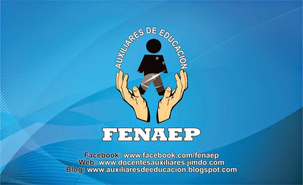AUXILIARES DE EDUCACION