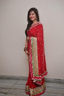 Priya Gor at Saheba Sumanyam premier 004