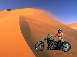 Harley Davidson Bikini Babes Wallpapers Bikes Beautiful Babe in Desert Wind Wallpaper