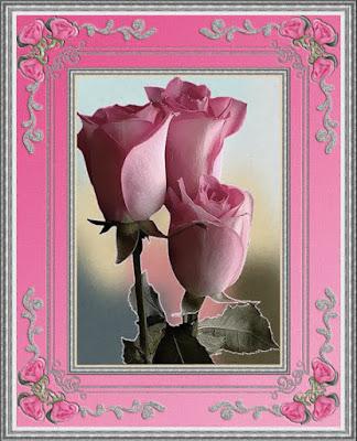 tarjetas de flores hermosas