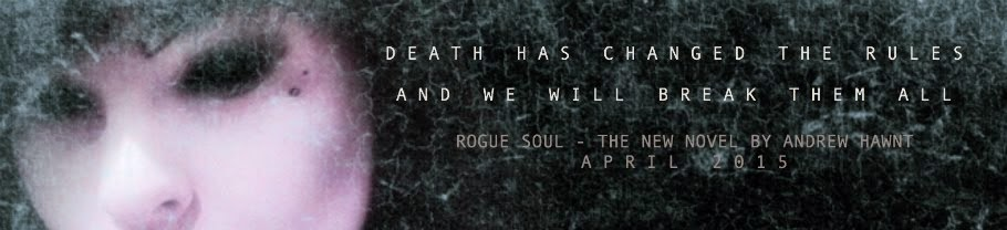 COMING SOON - ROGUE SOUL - THE NEW NOVEL BY ANDREW HAWNT