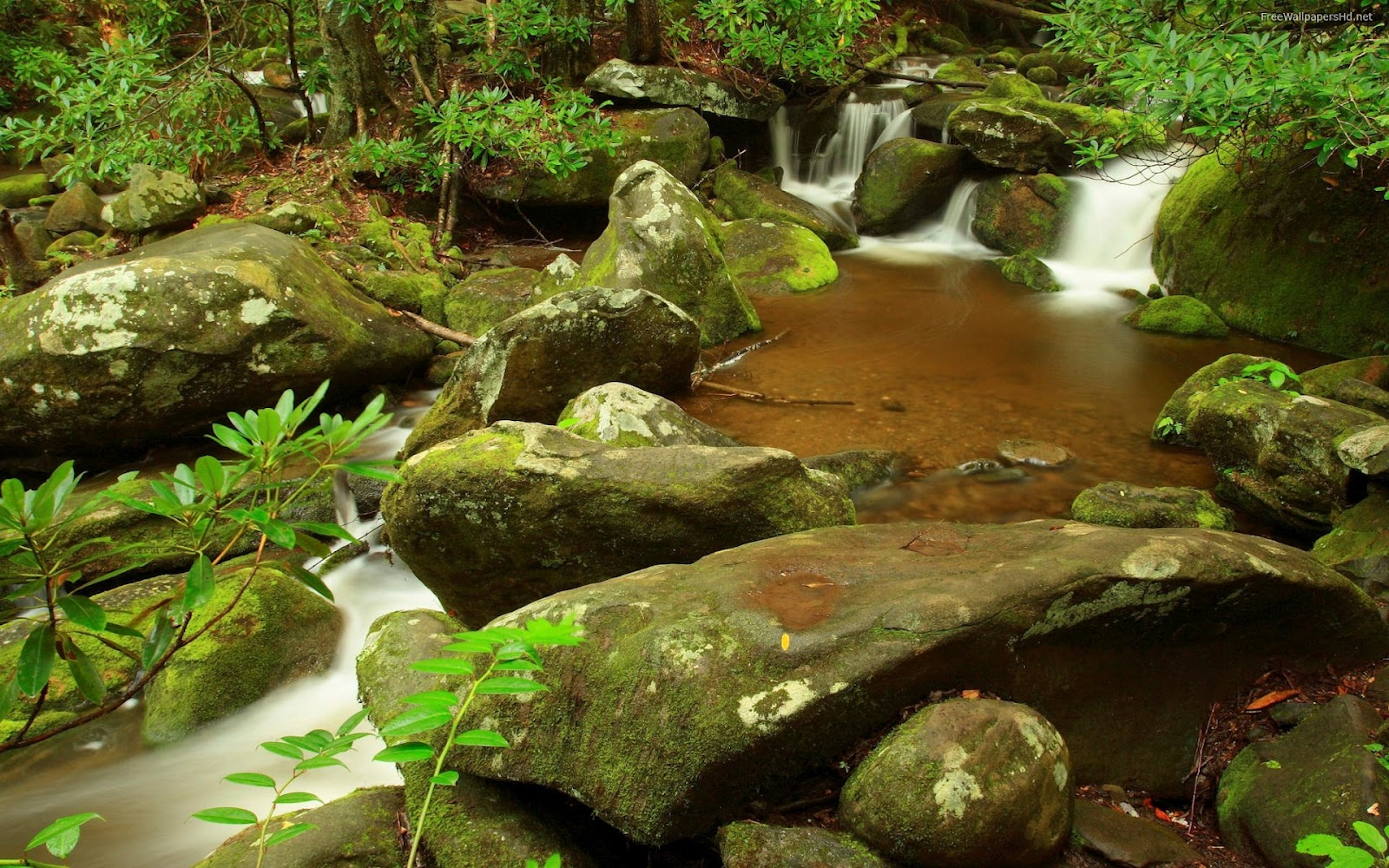 http://2.bp.blogspot.com/-oxphMtvc3lE/UB40k73ESQI/AAAAAAAAACI/u5FYhmYpd50/s1600/jungle-waterfalls-stone-wallpaper.jpg