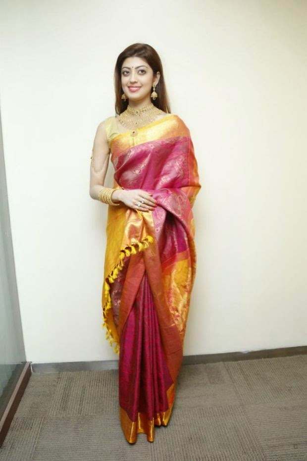 Pranitha hot saree stills