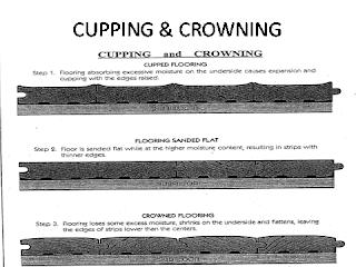 Elegant floors for Hardwood floors cupping