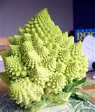 Romanesco italia ~ Romantic, yes!