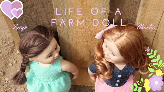 Life of a Farm Doll