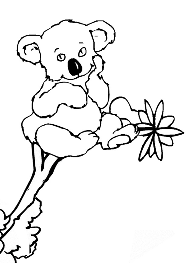 Cute printable animal koalas coloring books for kids for Koala coloring pages