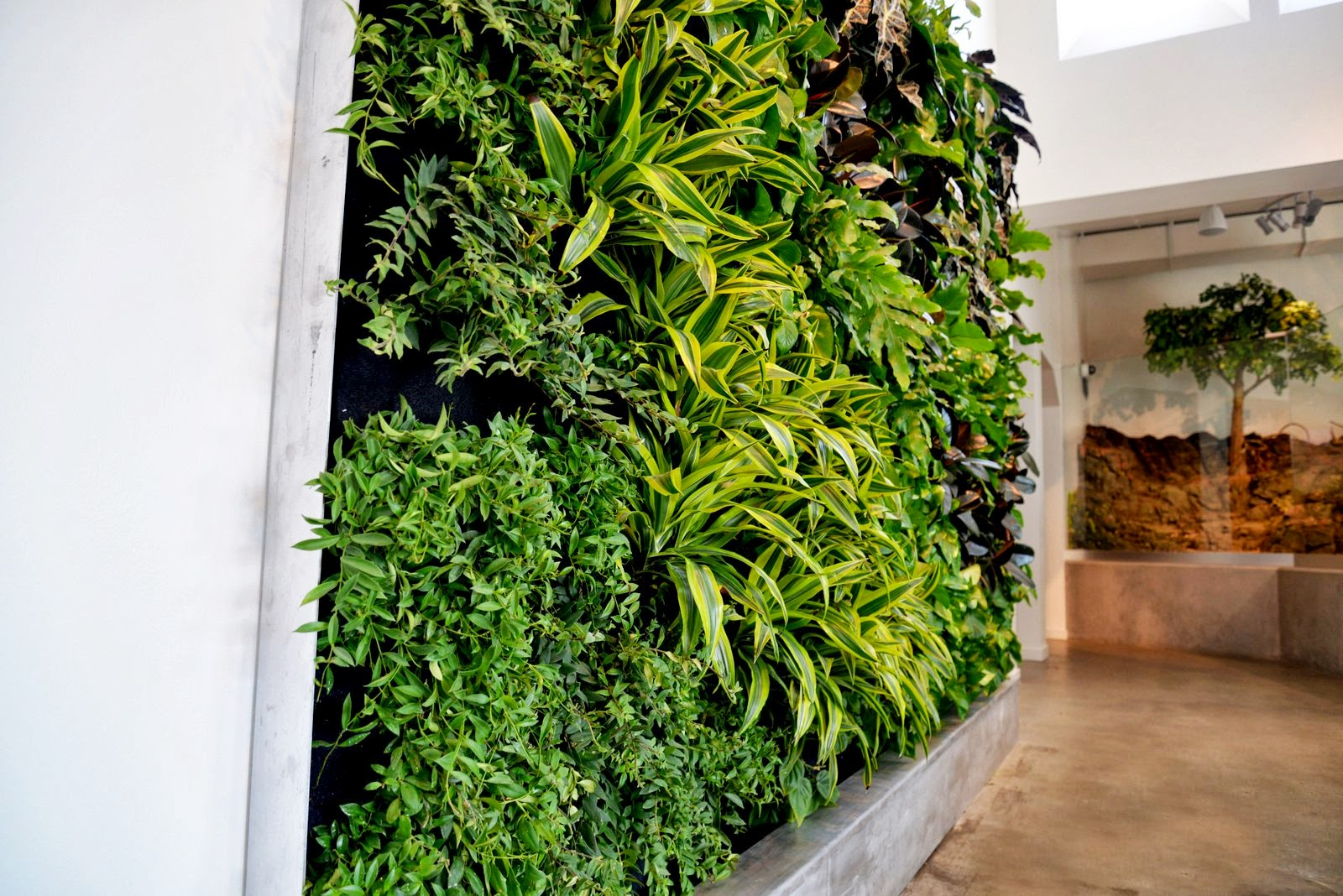 plants on walls vertical garden systems san francisco bay. Black Bedroom Furniture Sets. Home Design Ideas